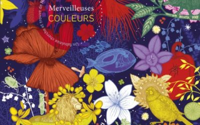 Nathalie Béreau and Michaël Cailloux  Merveilleuses couleurs / Beautiful colors